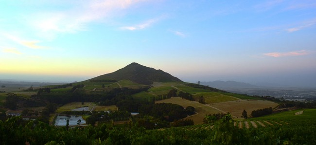 Cape Winelands from Kanonkop at the foot of Simonsberg, South Africa