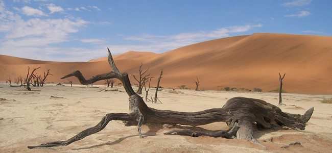 Death Valley at Sossusvlei in Namibia
