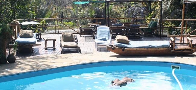 Hippo in the swimmingpool at Kapishya Hot Springs, Zambia