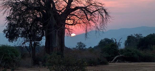 Sunset in the Lower Zambezi National Park, Zambia